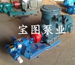 TCB防爆汽油齿轮泵