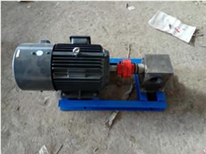 RT热熔胶齿轮泵